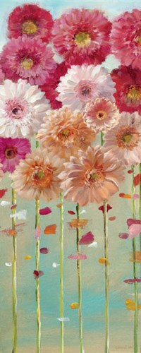 Daisies Spring I Poster by Danhui Nai for $46.25 CAD