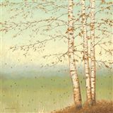 Golden Birch II with Blue Sky