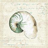 Ocean Prints III