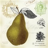 Pear Notes