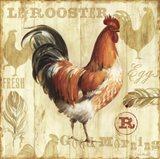 Joli Rooster I