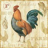 Joli Rooster II