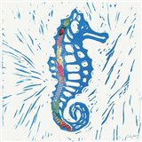 Sea Creature Sea Horse Color