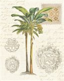 Vintage Palm Study I