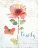 Rainbow Seeds Floral IX Family