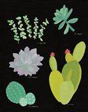 Succulent Chart III