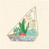 Succulent Terrarium V