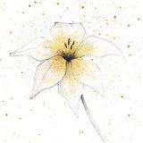 Gilded Graphite Floral V