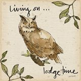 Lodge Life VI