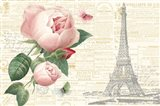 Roses in Paris II
