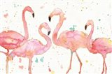 Flamingo Fever I