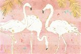 Flamingo Fever IV
