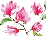 Bright Magnolias