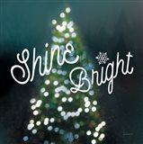 Sparkle Lights I