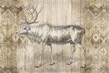 Natural History Lodge IX