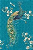 Ornate Peacock IXE