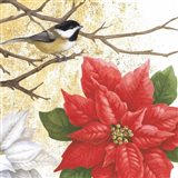 Winter Birds Chicadee Collage