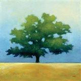 Under the Oak I