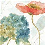 Rainbow Seeds Flowers IV