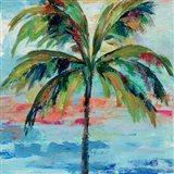 California Palm I