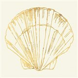 Coastal Breeze Shell Sketches V