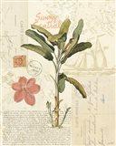 Floridian III