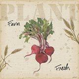 Farmers Feast IV
