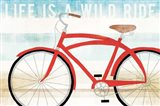 Beach Cruiser His I