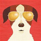 Beach Bums Terrier I