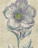 Belle Fleur II Crop Linen