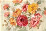 Brushy Roses