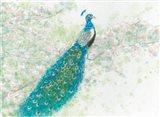 Spring Peacock I