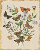 Butterfly Bouquet I Linen