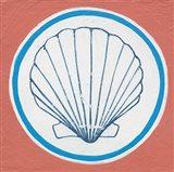 Summer Shells II