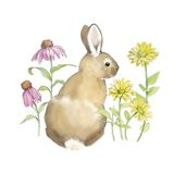 Wildflower Bunnies I Sq