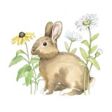 Wildflower Bunnies II Sq