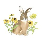 Wildflower Bunnies III Sq
