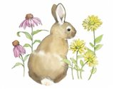 Wildflower Bunnies I