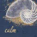 Calm Seas IX