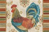 Rooster Rainbow IIA