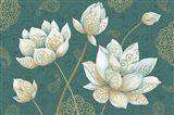 Lotus Dream IB