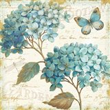 Blue Garden V