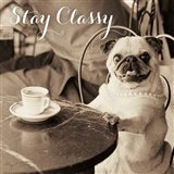 Cafe Pug Stay Classy