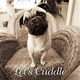 Wonder Lets Cuddle Sq Script 1