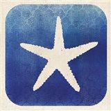 Watermark Starfish