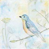Sketched Songbird II