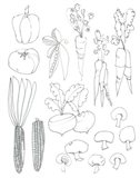 Line Art Veggies