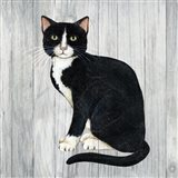 Country Kitty I on Wood
