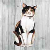 Country Kitty III on Wood