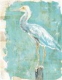Coastal Egret II